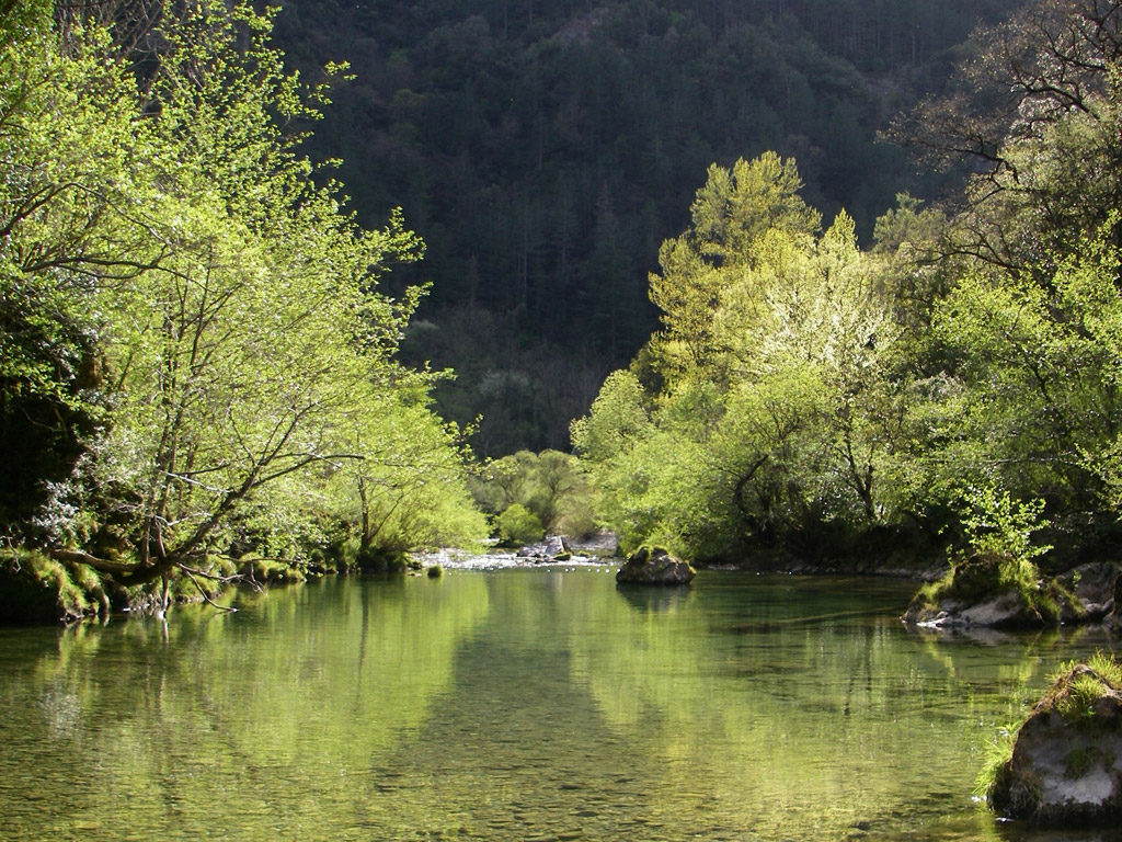 les cévennes sont parcourues par de magnifiques rivières d'une grande clarté comme la Vis