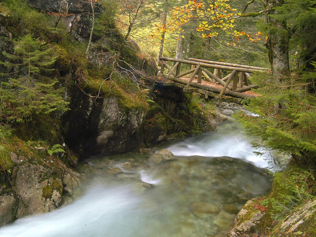 Guide de pêche Ardèche et Cévennes, la pêche à la mouche permet de découvrir des endroits secrets d'une rare beauté et vous évoluerez dans un environnement sauvage et préservé