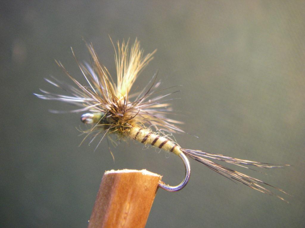 mouche sèche imitant une éphémèra danica, mouche de mai, montage parachute, utuliée lors de stage mouche Ardèche