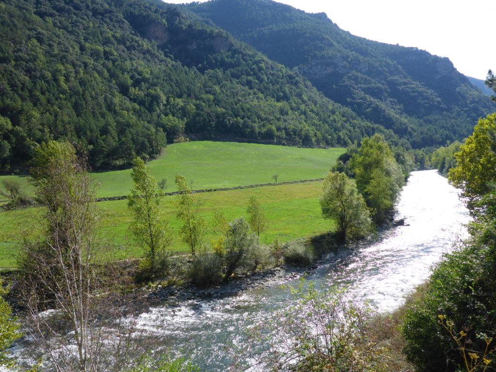 C'est en Cerdagne, sur le Rio Segre, excellente rivière des Pyrénées espagnoles que je me propose de vous accompagner, dans le cadre d'un voyage pêche mouche Espagne